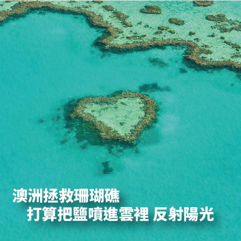 拯救澳洲大堡礁 靠「鹽」可能有用?!